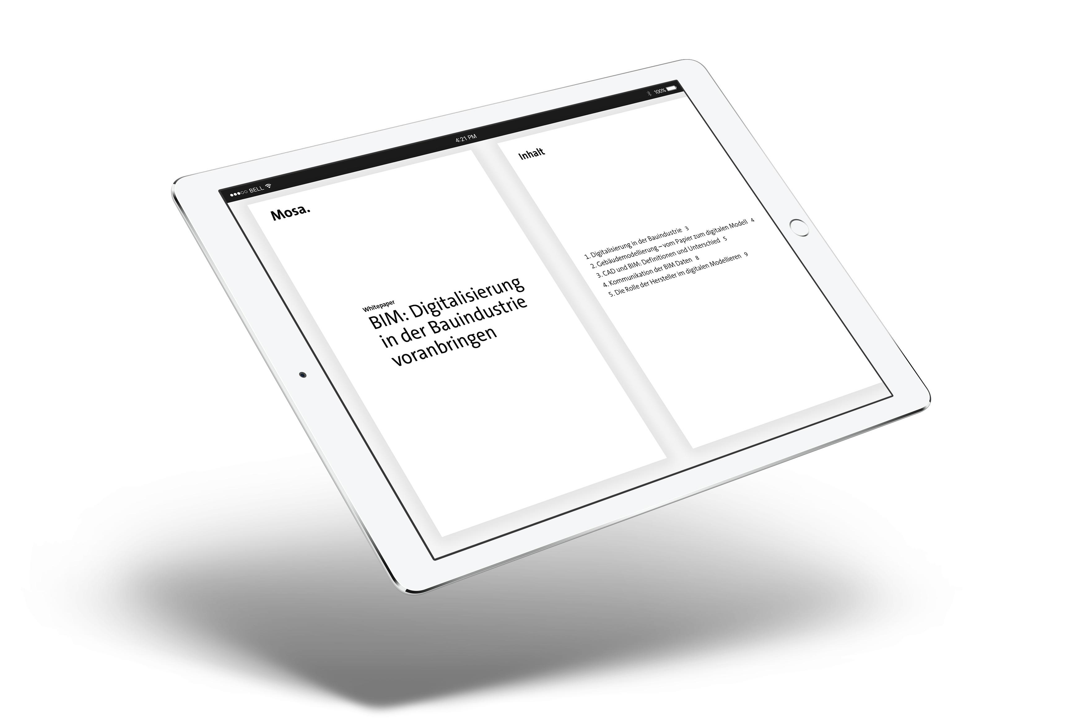 DE-WHITEPAPER-iPad-Landscape.jpg